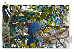 Carry-all Pouch featuring the photograph White-cheeked Turaco by Donna Brown