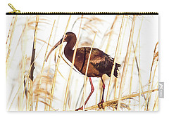 White Faced Ibis In Reeds Carry-all Pouch by Robert Frederick