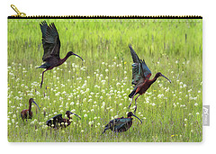 Carry-all Pouch featuring the photograph White-faced Ibis Rising, No. 1 by Belinda Greb