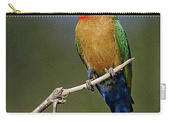 White Fronted Bee-eater Carry-all Pouch by Myrna Bradshaw