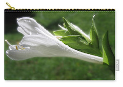 Carry-all Pouch featuring the photograph White Hosta Flower 46 by Maciek Froncisz