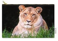 Carry-all Pouch featuring the photograph White Lion by Alexey Stiop