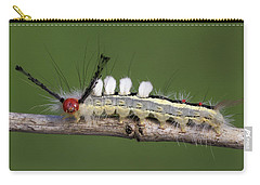 White-marked Tussock Moth 2 Carry-all Pouch
