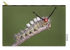 White-marked Tussock Moth Carry-all Pouch