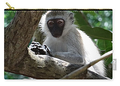 White Monkey In A Tree 4 Carry-all Pouch