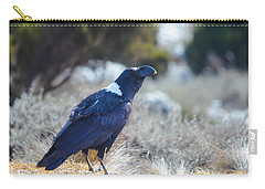 Carry-all Pouch featuring the photograph White-necked Raven Camping Out On Kilimanjaro by Jeff at JSJ Photography