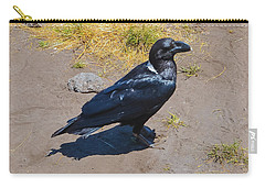 Carry-all Pouch featuring the photograph White-necked Raven Of Kilimanjaro by Jeff at JSJ Photography