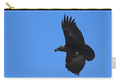 Carry-all Pouch featuring the photograph White-necked Raven Soaring Along Kilimanjaro by Jeff at JSJ Photography
