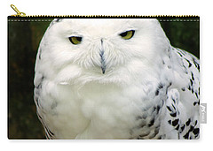 White Owl Carry-all Pouch by Rainer Kersten