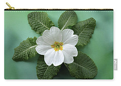 White Primrose Carry-all Pouch by Terence Davis