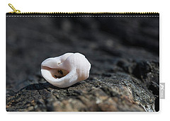 White Shell Carry-all Pouch