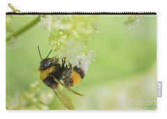 White-tailed Bumblebee - Bombus Lucorum Carry-all Pouch by Jivko Nakev