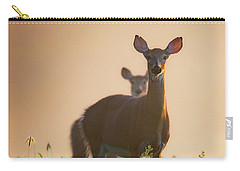 White-tailed Deer 2016 Carry-all Pouch
