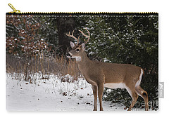 White-tailed Deer - 8904 Carry-all Pouch