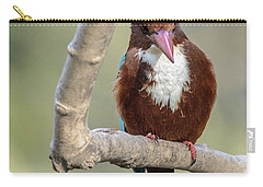 White-throated Kingfisher 01 Carry-all Pouch