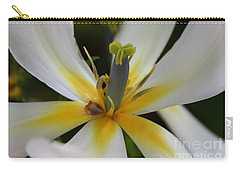 Carry-all Pouch featuring the photograph White Tulip by Jolanta Anna Karolska