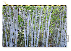 White Wilderness Carry-all Pouch by James BO Insogna