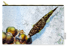 Carry-all Pouch featuring the photograph Whitespotted Filefish by Perla Copernik