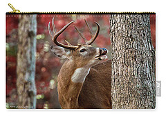 Whitetail #682 Carry-all Pouch