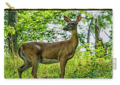 Carry-all Pouch featuring the photograph Whitetail Deer  by Thomas R Fletcher