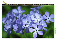Carry-all Pouch featuring the photograph Wild Blue Phlox Dspf0391 by Gerry Gantt