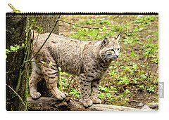 Wild Bobcat Carry-all Pouch by Teri Virbickis