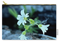 Carry-all Pouch featuring the photograph Wild Chickweed by Ann E Robson