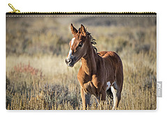 Wild Colt In Sand Wash Basin - Northwest Colorado Carry-all Pouch