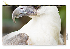 Carry-all Pouch featuring the photograph Wild Eagle by Jorgo Photography - Wall Art Gallery