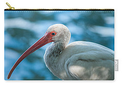 Wild Eyed Ibis Carry-all Pouch