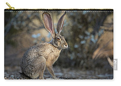 Wild Jackrabbit Carry-all Pouch