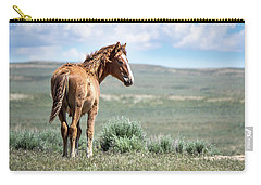 Wild Mustang Colt Of Sand Wash Basin Carry-all Pouch