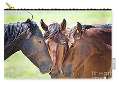Wild Mustang Family Carry-all Pouch