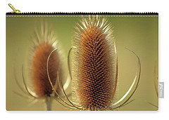 Wild Teasel Carry-all Pouch by Bruce Patrick Smith