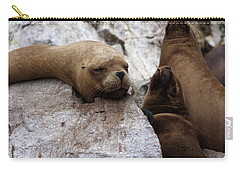 Wildlife Of The Ballestas Islands Carry-all Pouch by Aidan Moran