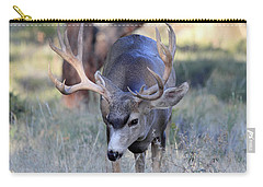 Carry-all Pouch featuring the photograph Wildlife Wonder by Shane Bechler
