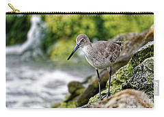 Willet By The Sea Carry-all Pouch by Paul Mashburn