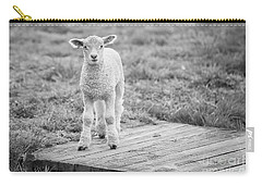Williamsburg Lamb Carry-all Pouch