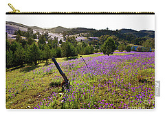 Carry-all Pouch featuring the photograph Willow Springs Station by Bill Robinson