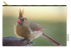 Carry-all Pouch featuring the photograph Wind Blown Cardinal  by Terry DeLuco