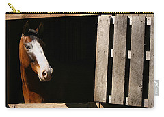 Carry-all Pouch featuring the photograph Window by Angela Rath