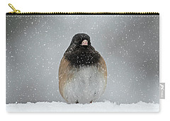 Winter - 365-337 Carry-all Pouch