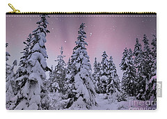 Winter Beauty Carry-all Pouch by Sheila Ping