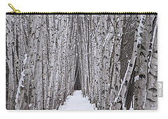 Winter Birch Path Carry-all Pouch