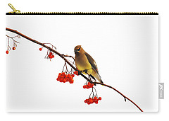 Winter Birds - Waxwing  Carry-all Pouch by Andrea Kollo