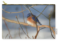 Winter Bluebird Art Carry-all Pouch