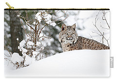 Carry-all Pouch featuring the photograph Winter Bobcat by Steve McKinzie