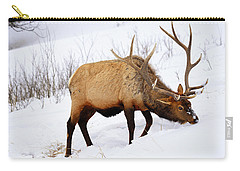 Carry-all Pouch featuring the photograph Winter Bull by Greg Norrell