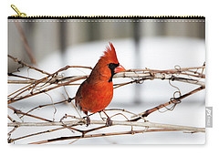 Winter Cardinal 12 Carry-all Pouch by David Stasiak