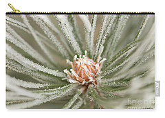 Carry-all Pouch featuring the photograph Winter Evergreen by Ana V Ramirez